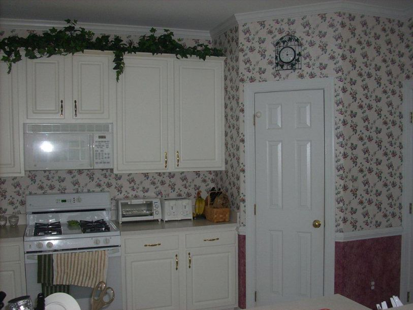 kitchen cabinet discounts before kitchen makeover powell old2
